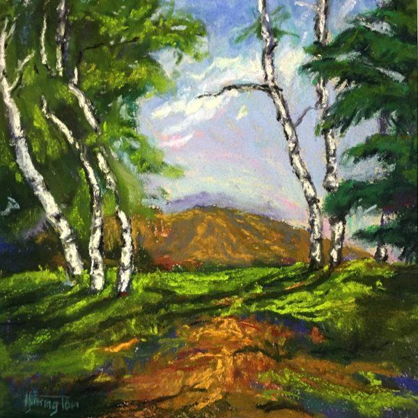 Ute Mountain
